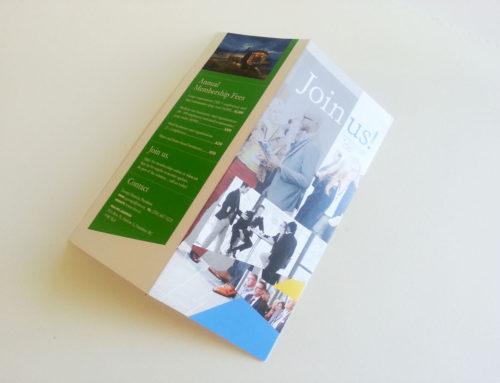VIEA Brochure